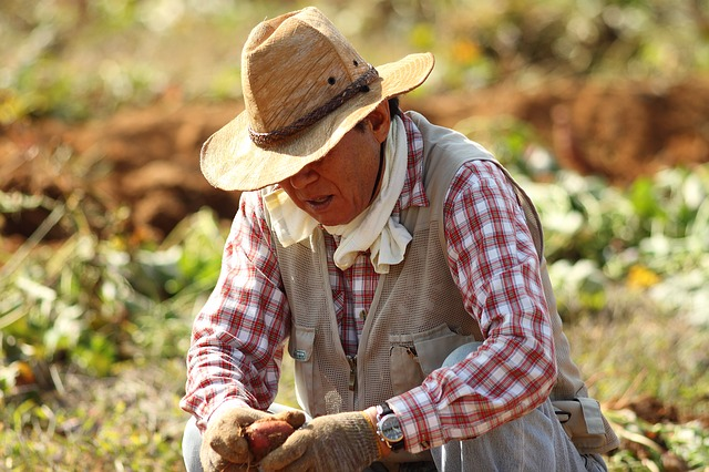 Farmworkers at Risk